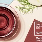 Pantone-Marsala[1]